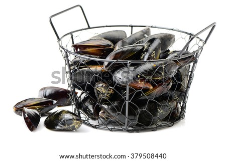 Fresh mussel on white background - stock photo