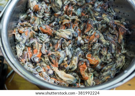 Fresh mussel ready for cooking fried mussel pancakes. Prepare to cooking for sale in local food market. - stock photo