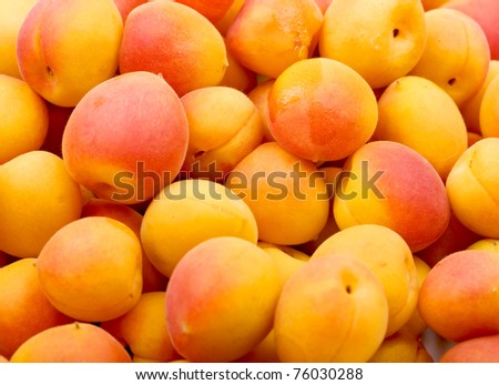 Fresh natural apricot background - stock photo