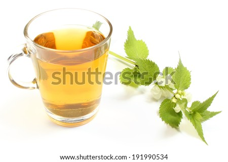 Fresh nettle with white flowers and cup of hot beverage, nettle brewed in cup. Isolated on white background
