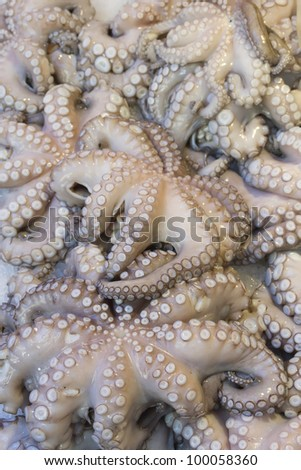 Fresh octopuses prepared to sell at the market (Italy) - stock photo