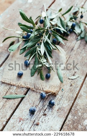 fresh olives  - stock photo