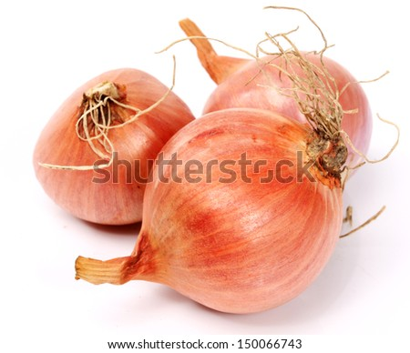 Fresh onion bulbs isolated on white background, clipping path included