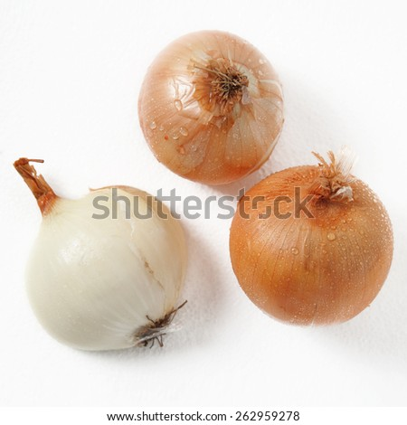 Fresh onion with water drops  - stock photo