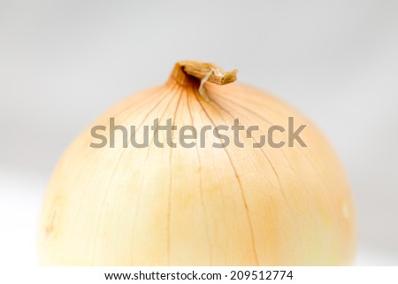 fresh onions on a white background close-up