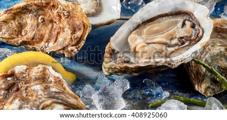 Fresh opened uncooked marine oyster still in the shell on a bed of crushed ice with asparagus and other oysters for a gourmet starter or appetizer - stock photo