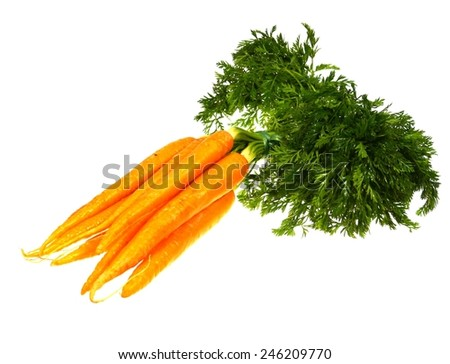 Fresh orange carrots with a green foliage over white - stock photo