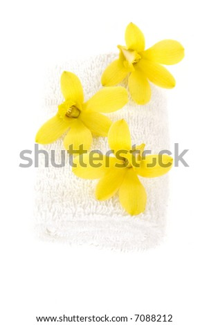 Fresh orchids and towel - stock photo