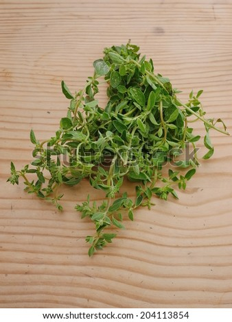 Fresh oregano on wooden background