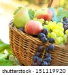 Fresh organic autumn fruits - stock photo