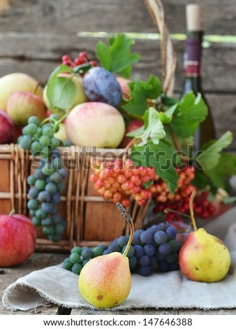 fresh,organic autumn fruits on the wooden background