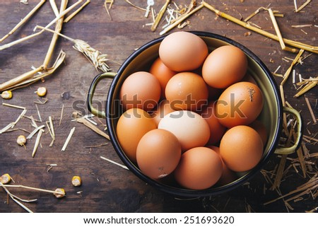 Fresh organic chicken eggs - stock photo