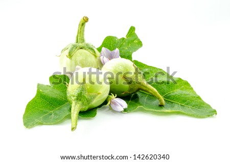 fresh organic green eggplant isolated on white background