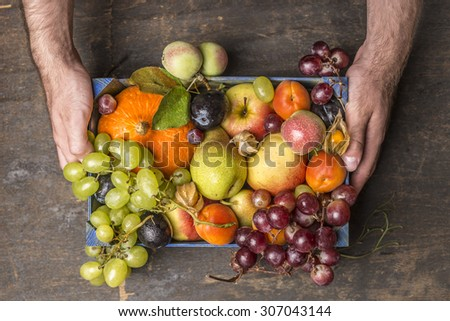 fresh organic harvest  fruits in wooden box in mans hands on dark rustic wooden background, top view - stock photo