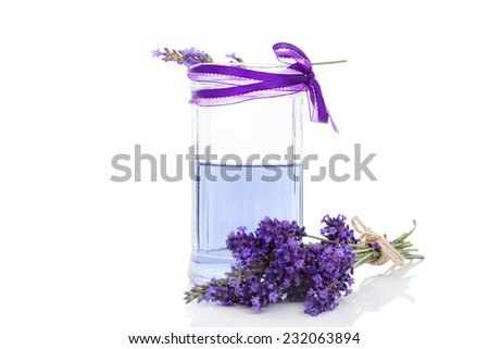 Fresh organic lavender lemonade with fresh lavender blossom isolated on white background. Healthy fresh nonalcoholic summer drink.  - stock photo
