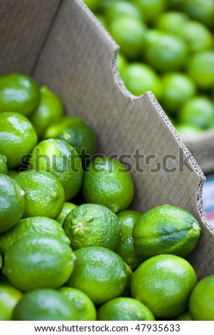 Fresh Organic Limes Piled In Boxes At Farmers Market - stock photo