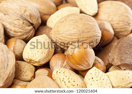 Fresh Organic Mixed Nuts including Walnuts, Almonds, Hazelnuts, Brazil Nuts - stock photo