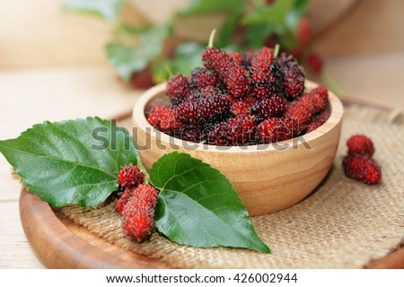 fresh organic mulberries in wooden bowl with mulberry fruit, branch and leaves on wooden background.  - stock photo