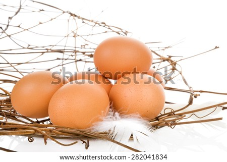 Fresh organic natural brown eggs isolated on white background. Fresh modern image language. Culinary arts.  - stock photo