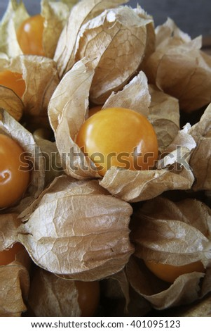 Fresh organic physalis fruit ,Helathy fresh Gooseberry Cape ,Uchuva delicious tropical fruit in Peru, Cape gooseberry (Physalis peruviana) plant on wooden background
