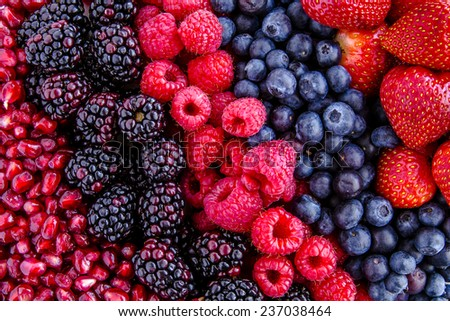 Fresh organic pomegranate seeds, blackberries, raspberries, blueberries and strawberries in lines next to each other - stock photo