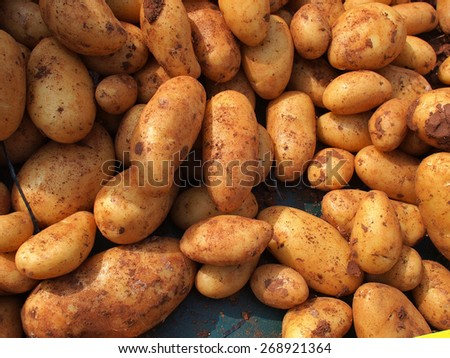 Fresh organic potatoes on display in a store market - stock photo
