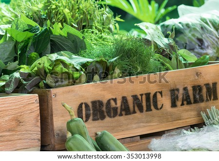 Fresh organic produce from farm in wooden box - stock photo
