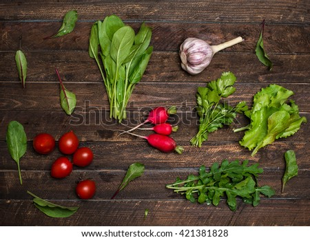 Fresh organic radishes cherry tomatoes and greens herbs just from the garden on rustic wooden background - stock photo