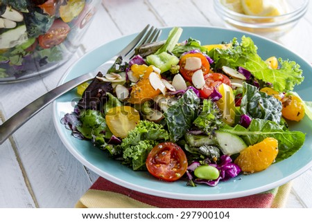 Fresh organic super food salad sitting on blue plate with fork on side - stock photo
