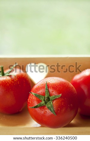 fresh organic tomatoes - stock photo