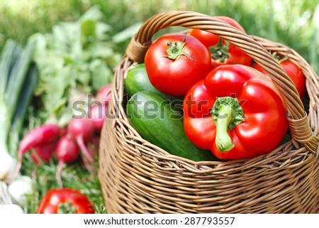 fresh organic vegetables in a wicker basket