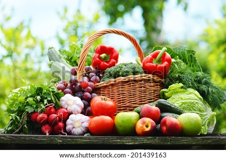 Fresh Organic Vegetables In Wicker Basket In The Garden.