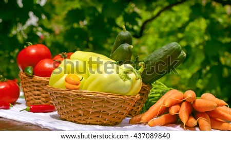Fresh organic vegetables on table