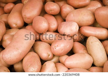 Fresh organic young potatoes sold on market - stock photo