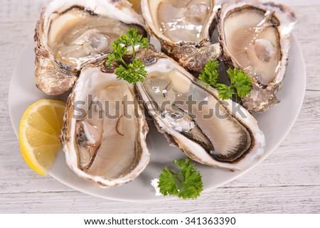 fresh oyster for dinner - stock photo