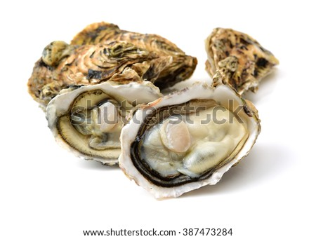 Fresh oyster on white background - stock photo