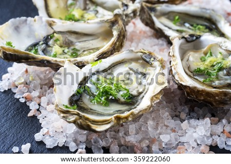 Fresh Oysters - stock photo
