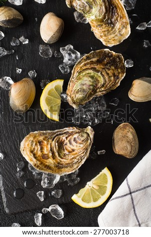 Fresh oysters and clams on a black stone plate top view - stock photo