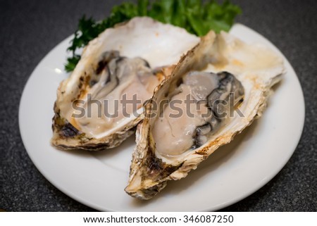 Fresh Oysters , delicious - stock photo
