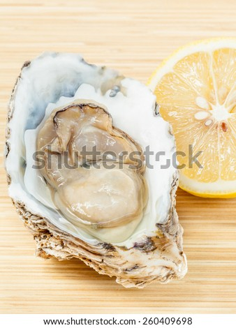 Fresh oysters for  appetizer . - With copy space - stock photo