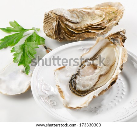 Fresh oysters on a white plate. Selective focus - stock photo