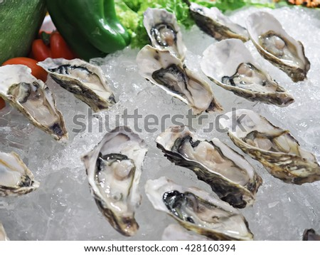 Fresh oysters on ice