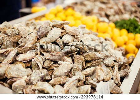 fresh oysters on the market - stock photo
