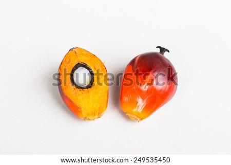 fresh palm oil - stock photo
