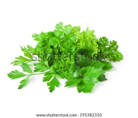 Fresh parsley, celery, basil leaves isolated on white background  - stock photo