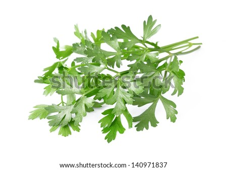 Fresh parsley herb isolated on white