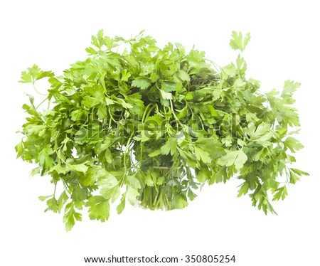Fresh parsley on white background