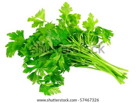 Fresh parsley on white background. Isolated over white - stock photo