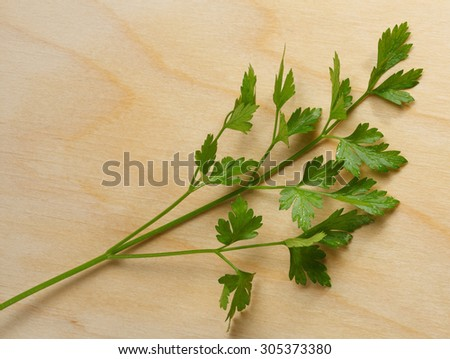 Fresh parsley over wood board background