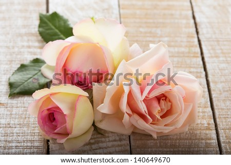 Fresh pastel roses on wooden background. Selective focus. - stock photo